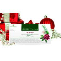 * Karácsonyi  ajándékutalvány OTTHONI NYOMTATÁSSAL 20.000 Ft + AJÁNDÉK 5.000 Ft-os utalvány
